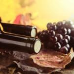 Our Australian Cabernet Sauvignon Food Pairing Tips