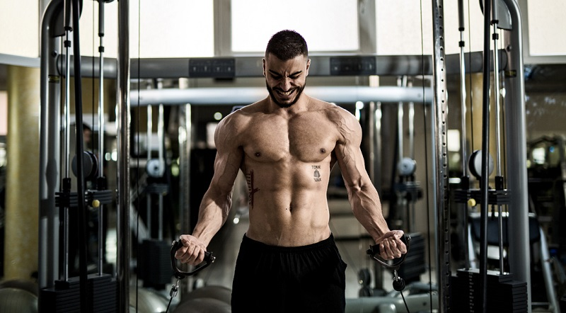 diet plan to get shredded 2