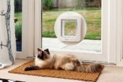 sliding glass pet door 3