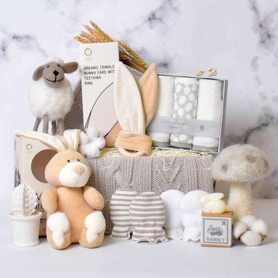 organic-newborn-baby-gift
