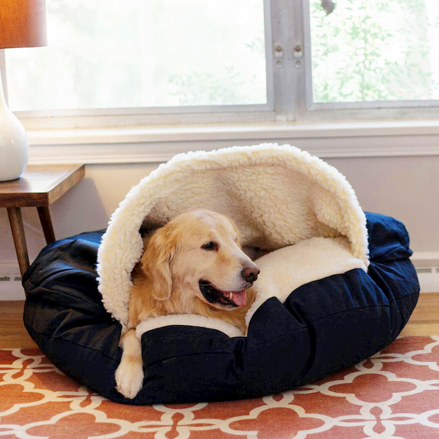 Dog resting on his bed