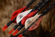 best hunting arrows
