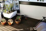 veggie-planters-in-balcony